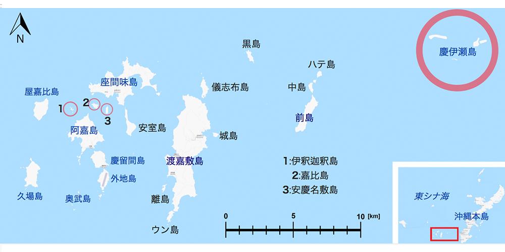 慶良間諸島 渡嘉敷島